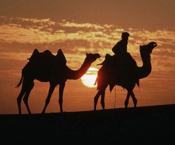 Rajasthan destinations tours